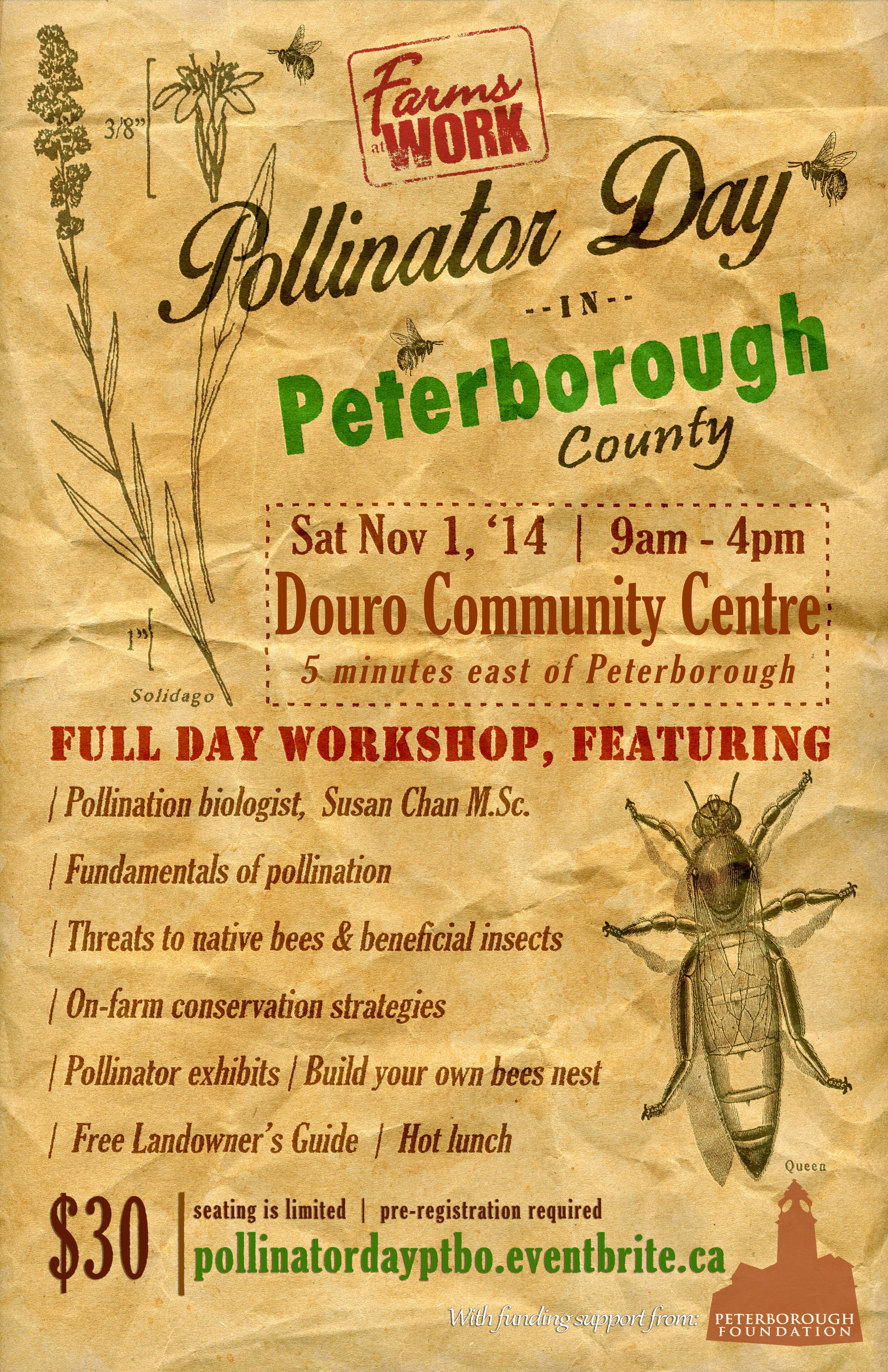 Pollinator Day in PTBO